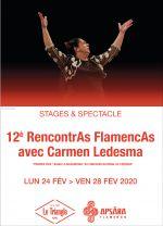 RENCONTRES FLAMENCAS